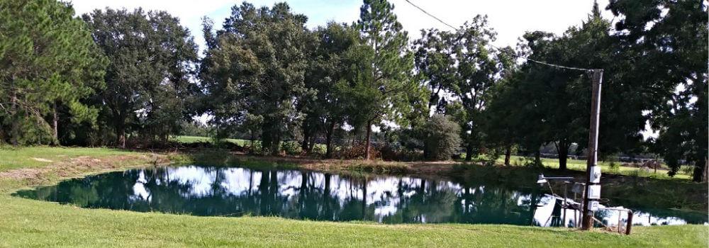 Lake Seminole Cabin Rentals - Near Reynolds Landing